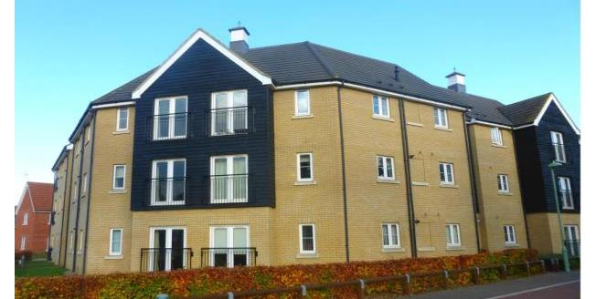 £900 per Calendar Month, 2 Bedroom Apartment To Rent in Red Lodge, IP28