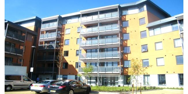 £925 per Calendar Month, 2 Bedroom Apartment To Rent in Chelmsford, CM2