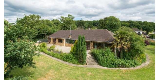 Guide Price £2,000,000, 4 Bedroom Bungalow For Sale in Essex, IG10