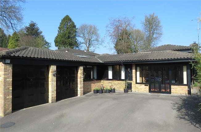 Guide Price £700,000, 3 Bedroom Bungalow For Sale in Beech, GU34