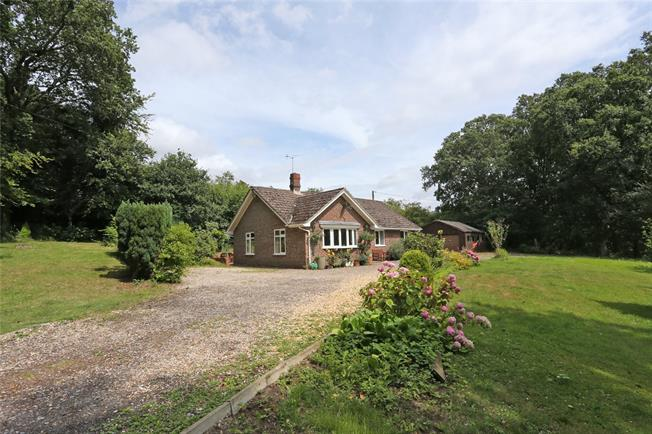 Guide Price £675,000, 3 Bedroom Bungalow For Sale in Dockenfield, GU10