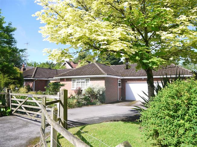 Guide Price £799,500, 3 Bedroom Bungalow For Sale in Haslemere, GU27