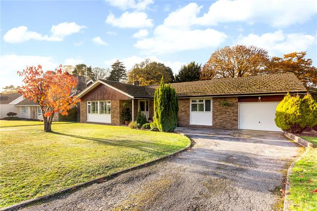 Guide Price £600,000, 3 Bedroom Bungalow For Sale in Liphook, GU30