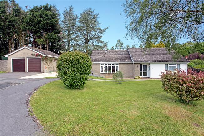 Guide Price £425,000, 3 Bedroom Bungalow For Sale in Tisbury, SP3